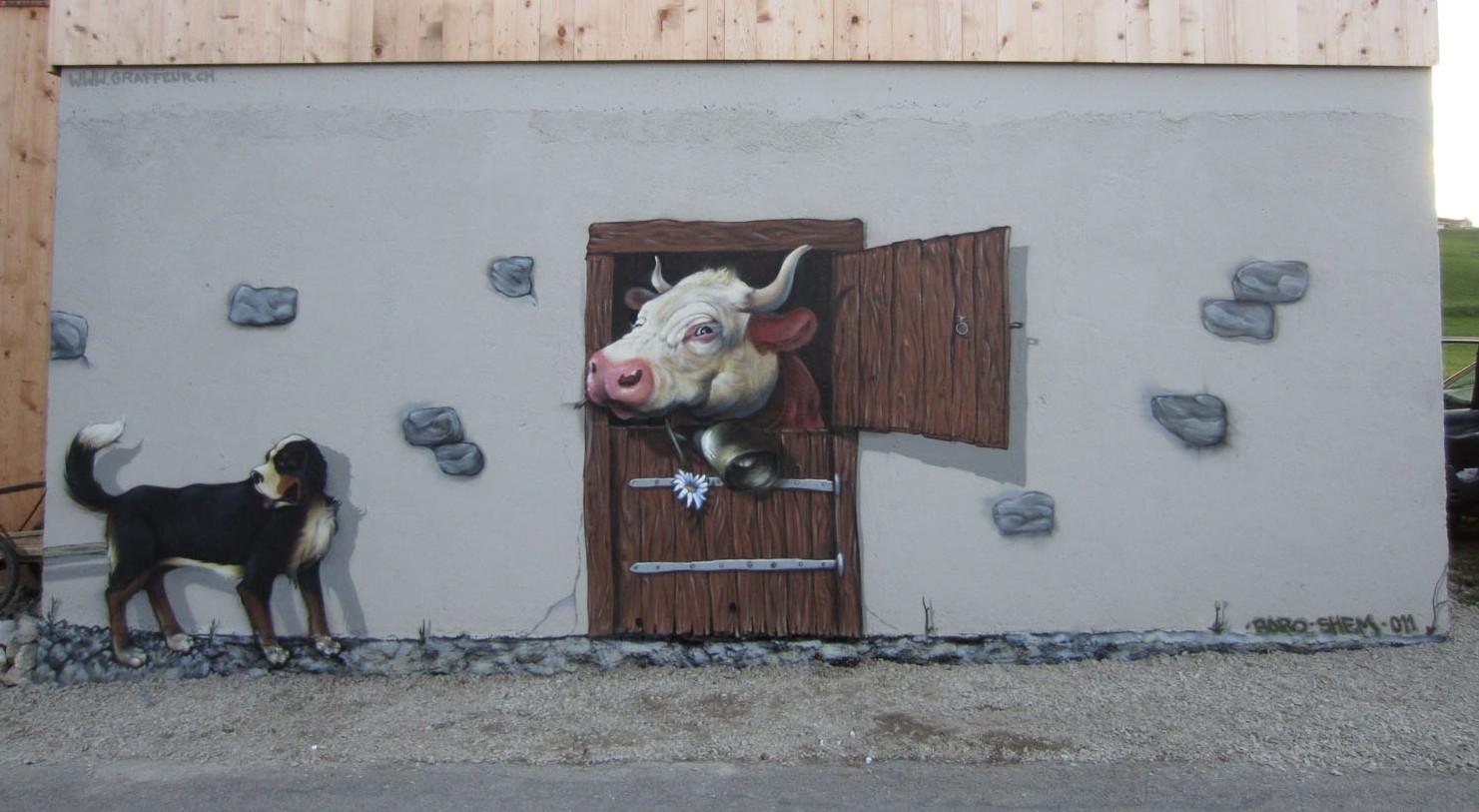 d coration trompe l 39 oeil en suisse artiste peintre professionnel et autodidacte peinture art d co. Black Bedroom Furniture Sets. Home Design Ideas